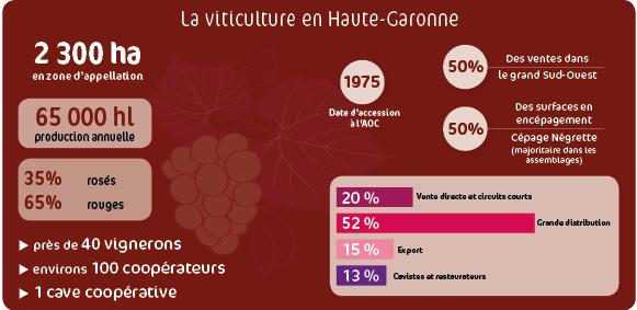 Viticulture chambre d 39 agriculture de haute garonne - Chambre agriculture haute garonne ...