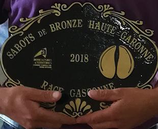 Challenge 2018 des sabots performances xxl chambre d 39 agriculture haute garonne - Chambre agriculture haute garonne ...